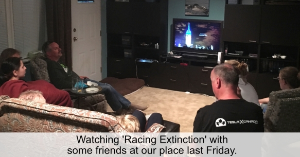 Watching Racing Extionction